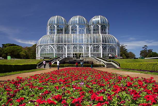greenhouse and flowers - curitiba stock photos and pictures