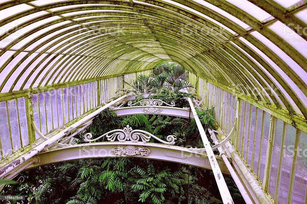 Greenhouse canopy royalty-free stock photo