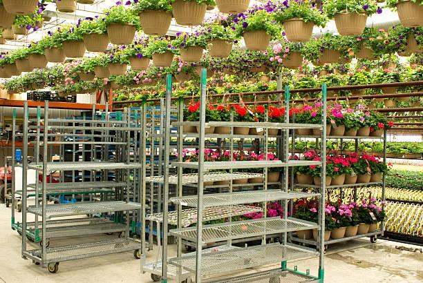 Greenhouse Carts stock photo