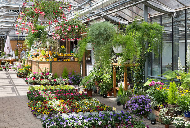 Greenhouse Full Of Plants For Sale In The Garden Center Stock Photo ...