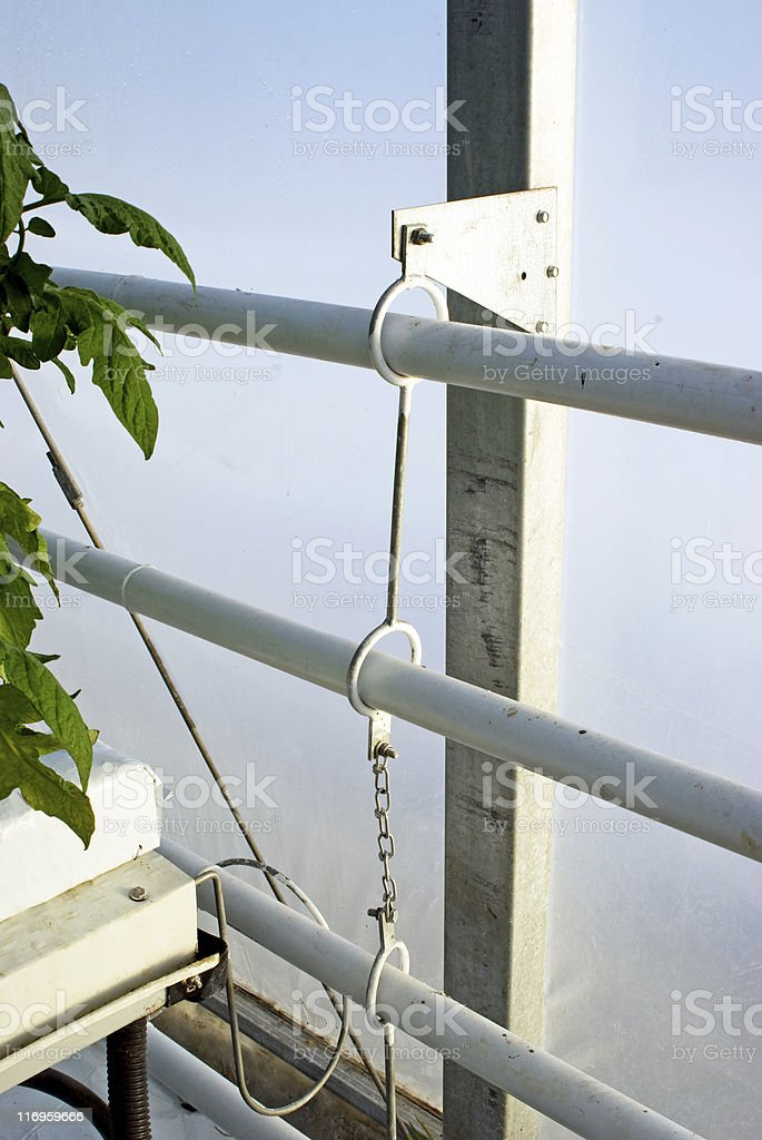 Greenhouse Heating Pipes royalty-free stock photo