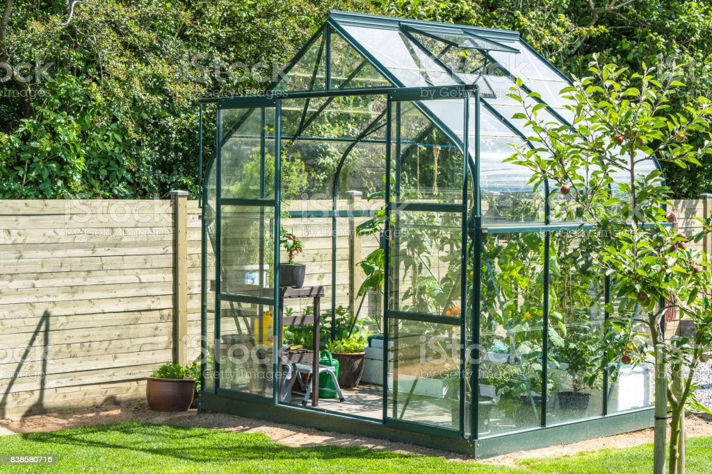Greenhouse in a garden near a wooden fence stock photo