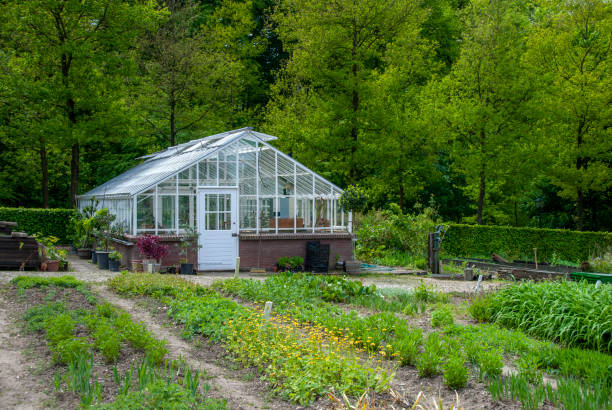Greenhouse in a vegetable garden. stock photo