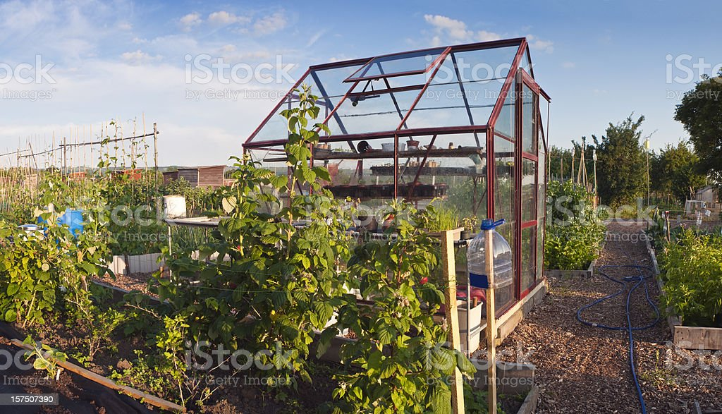 Greenhouse in allotment. royalty-free stock photo