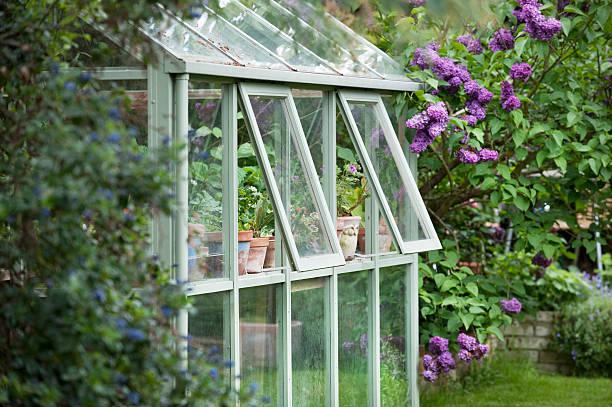теплица сзади на сад - оранжерея стоковые фото и изображения