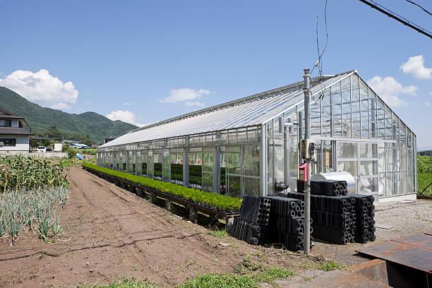 Greenhouse in rural Japan stock photo