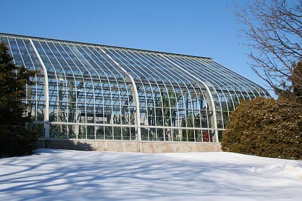 Greenhouse stock photo