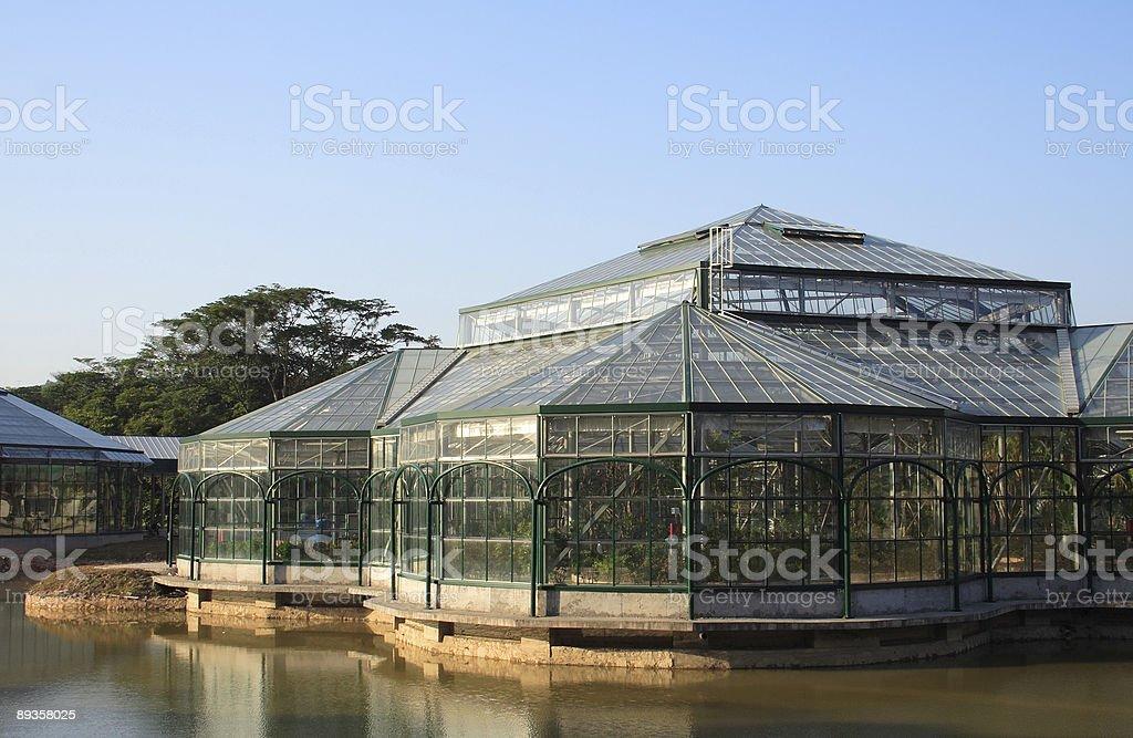 Greenhouse royalty free stockfoto