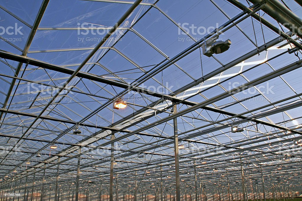 Greenhouse # 4 royalty-free stock photo