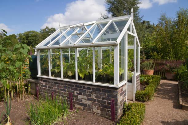 greenhouse takes pride of place in english country garden. - теплица стоковые фото и изображения