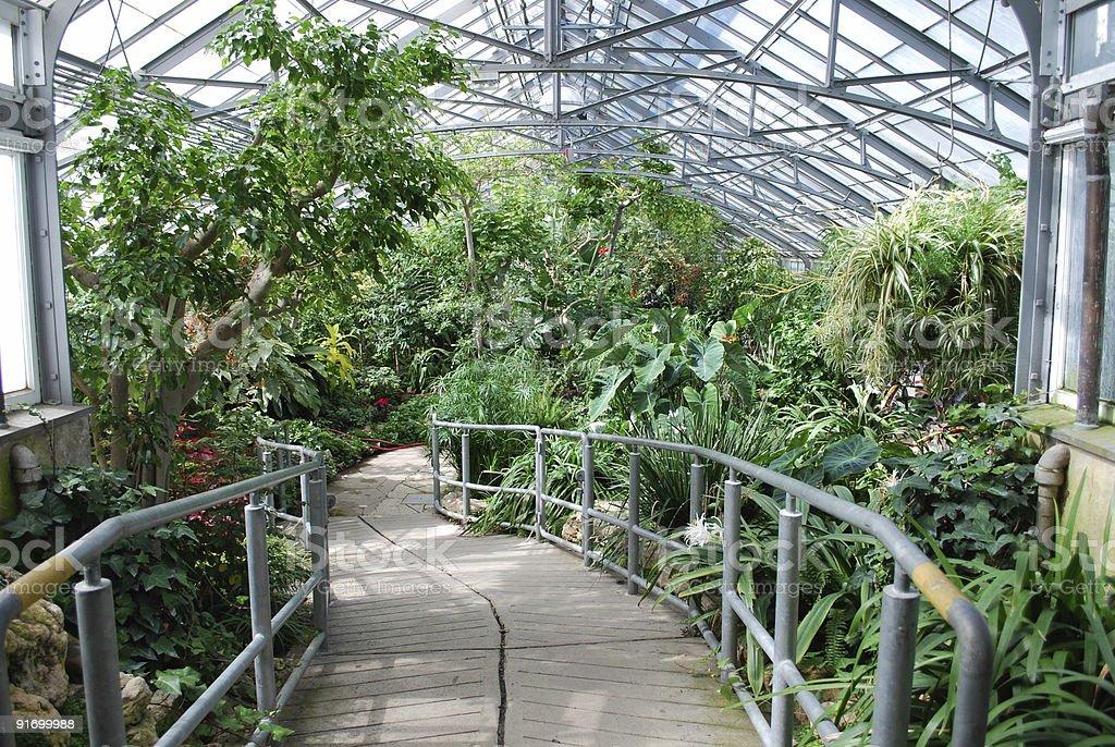 Greenhouse Tropical Garden in Toronto royalty-free stock photo