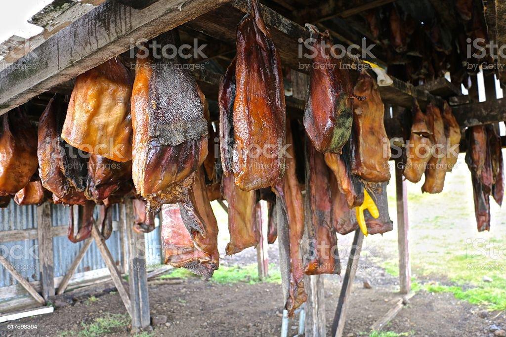 Greenland Shark Meat stock photo