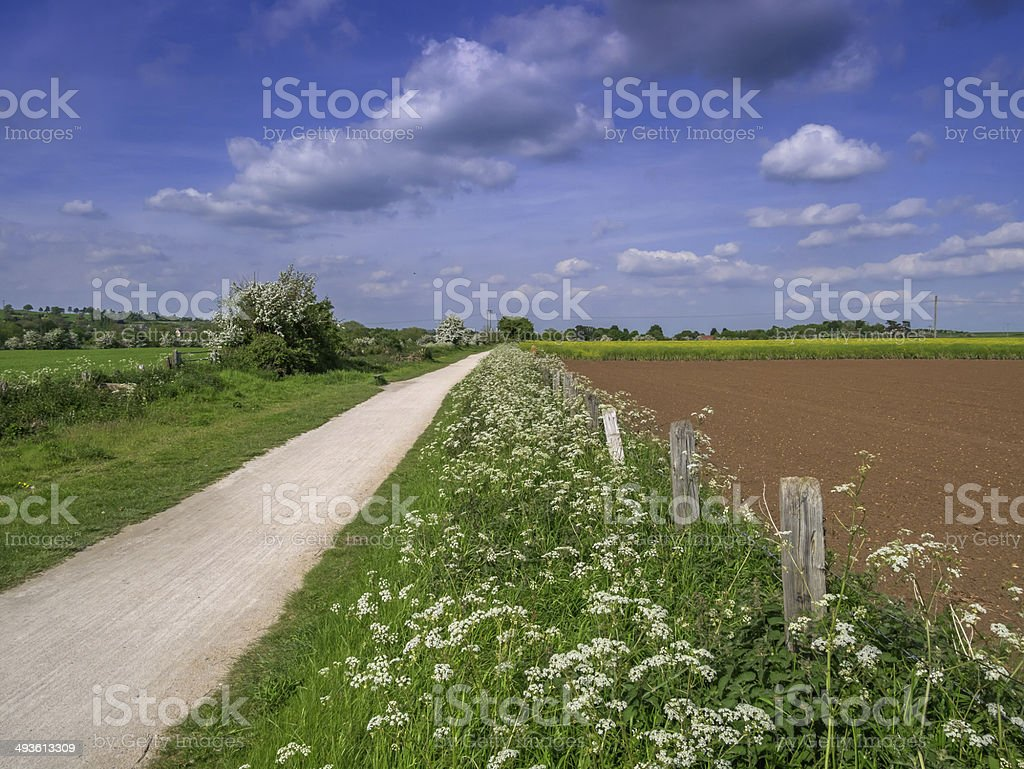 greenway royalty-free stock photo