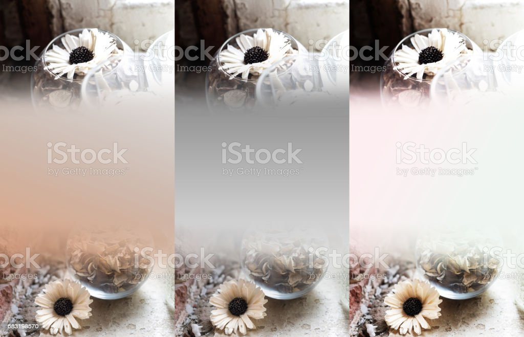 Greeting card background with different flowers in a variety of design and colors. In the picture there is a place to insert text. royalty-free 스톡 사진