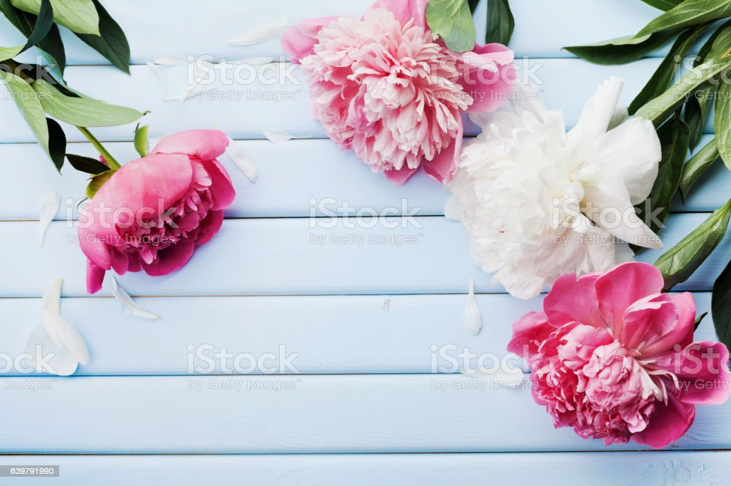 Greeting card for Mother or Woman day . Flat lay. stock photo