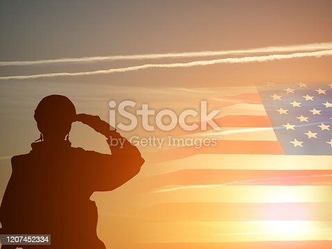 Greeting card for Veterans Day , Memorial Day, Independence Day .USA celebration. Concept - patriotism, protection, remember ,honor