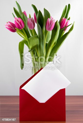 istock Greeting card with pink tulips isolated on white background 475834167
