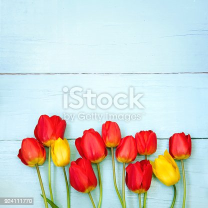 istock Greeting card with tulips Flower 924111770