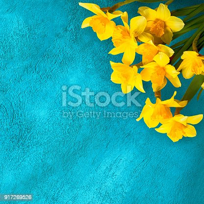istock Greeting cards for the holiday March 8th, Mothers Day 917269526