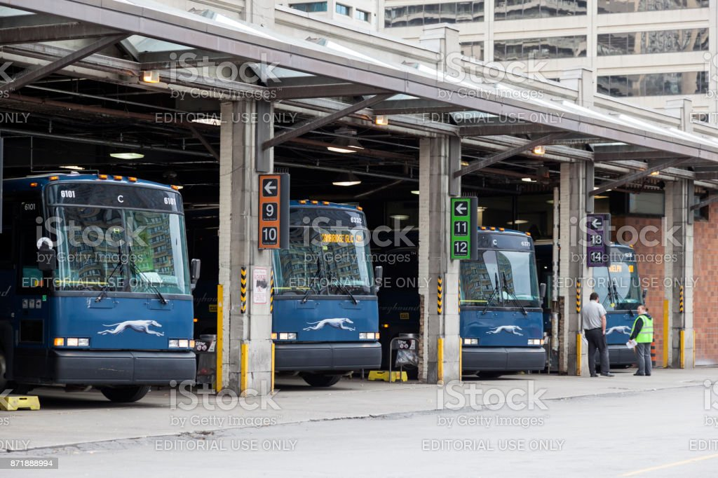 Grehound buses in Toronto, Canada stock photo