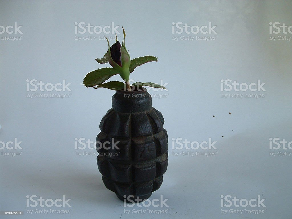 grenade and rose royalty-free stock photo