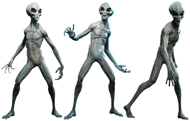 Grey aliens stock photo