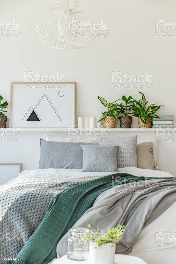 Grau Und Grün Schlafzimmer Innenraum Stockfoto und mehr ...