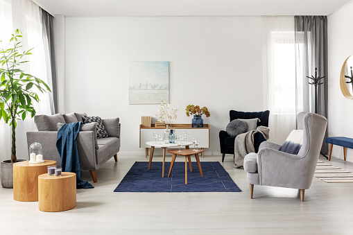 Grey And Navy Blue Living Room Interior With Comfortable Sofa And Armchairs Stock Photo - Download Image Now