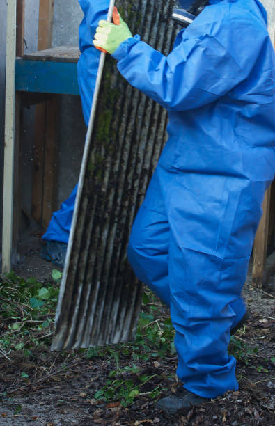 Grey asbestos being removed from a residental property by experts - foto stock