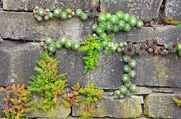 garten-wand - steine für gartenmauer stock-fotos und bilder