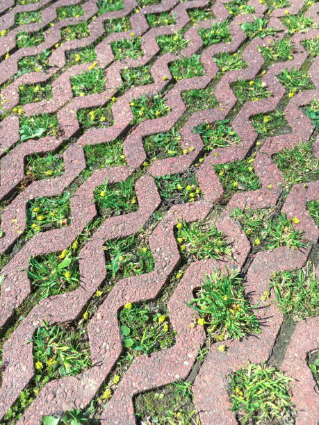 Royalty Free Grass Stone Floor Texture Pavement Design Pictures