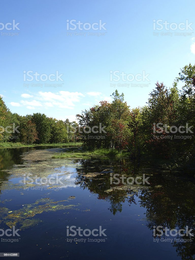 Grey County River royalty-free stock photo