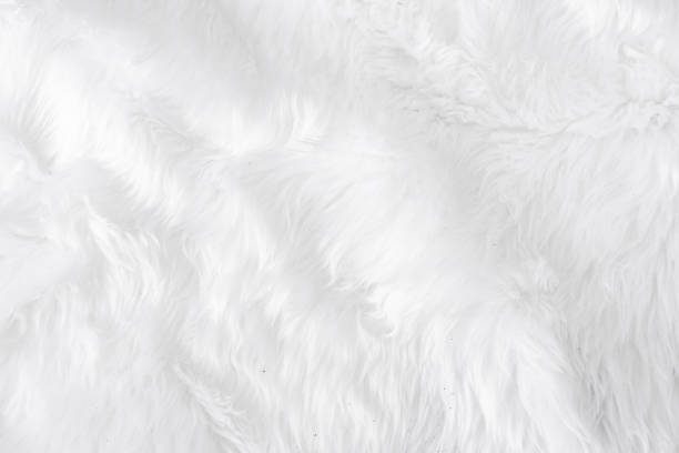 Grey fabric cotton cloth texture with blank soft material space for picture id1096222672?b=1&k=6&m=1096222672&s=612x612&w=0&h=f0ugq1vbo299detmn8rrmurmq uxpb5sntl7yb3uoci=