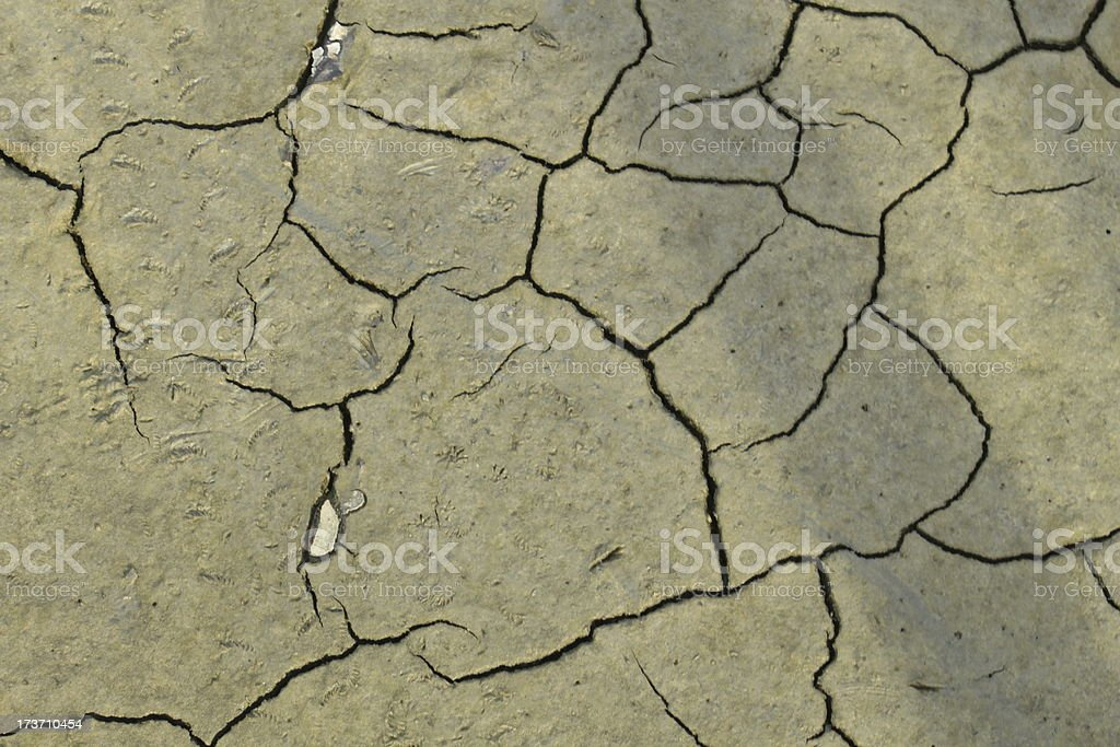 Grey ground royalty-free stock photo
