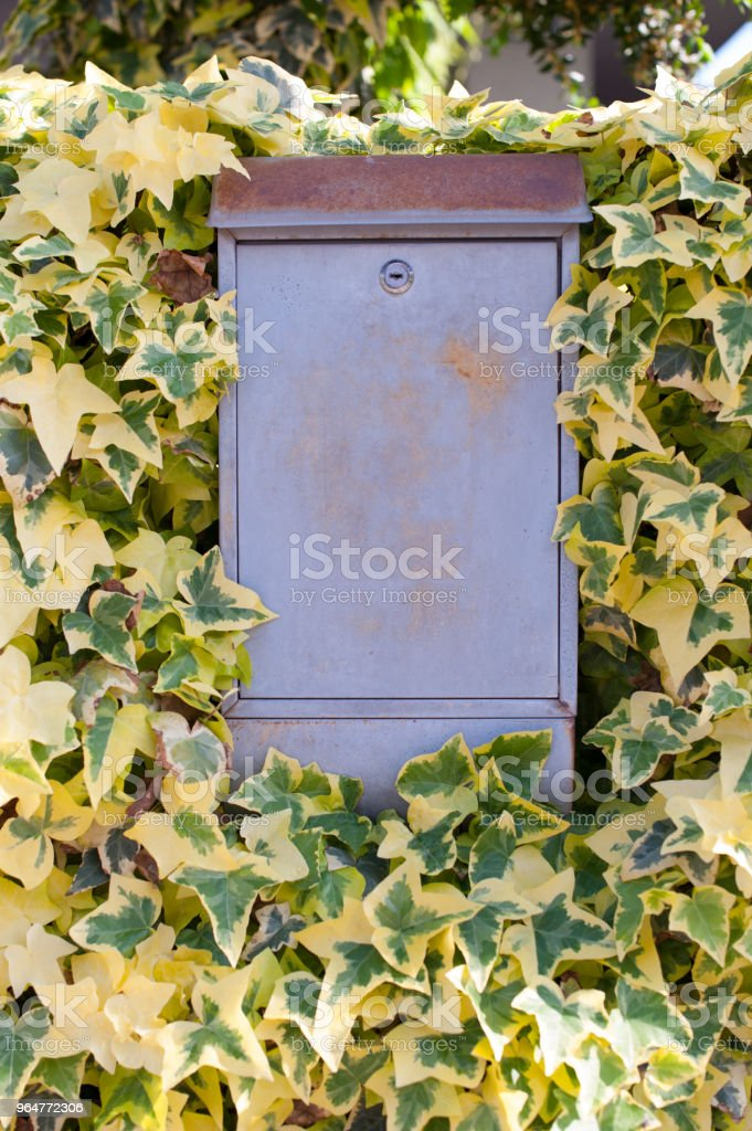 Grey metal mailbox surrounded with green and yellow leaves. Outdoor decor. royalty-free stock photo