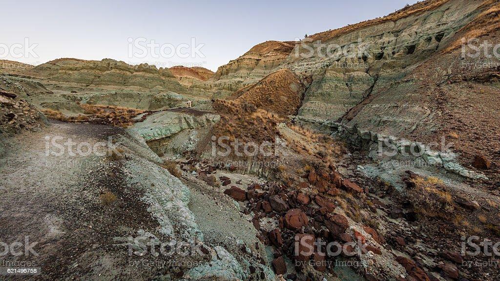 Grey rock. The unusual color. Dry landscape. photo libre de droits