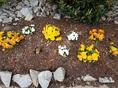 A newly landscaped flowerbed with flat rocks, orange pebbles, a rose bush, Snapdragon flowers, dark mulch, and a stone bench.