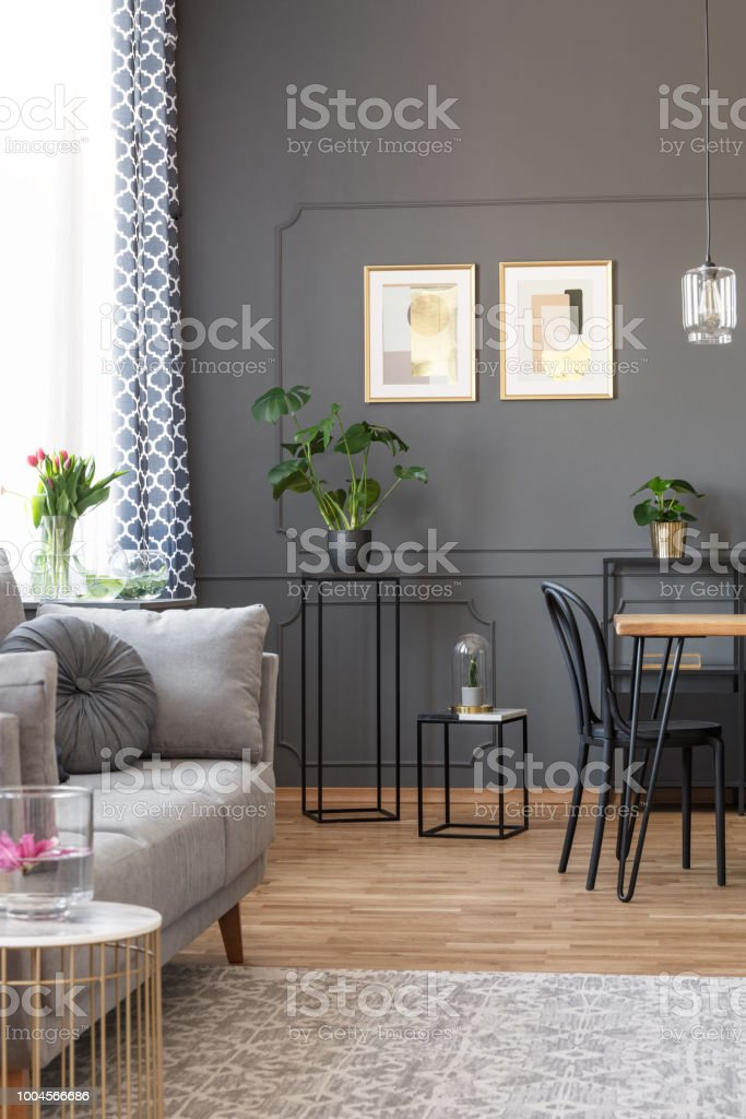 Grey sofa on carpet in living room interior with posters on the wall above plants. Real photo stock photo