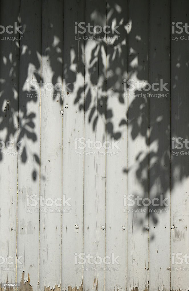 Grey wooden wall with shadow from leaves royalty-free stock photo
