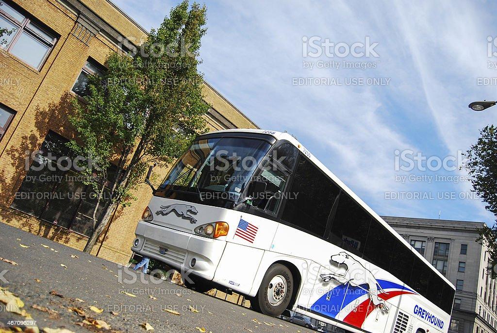 Greyhound bus stock photo