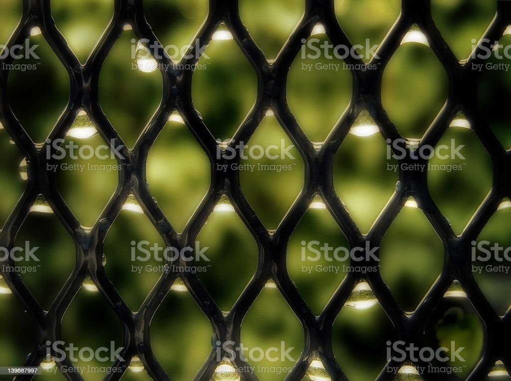 Grid With Waterdrops stock photo