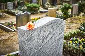Red carnation on gravestone / Tombstone