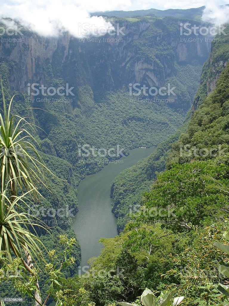 Grijalva river in Sumidero Canyon in Chiapas, Mexico stock photo