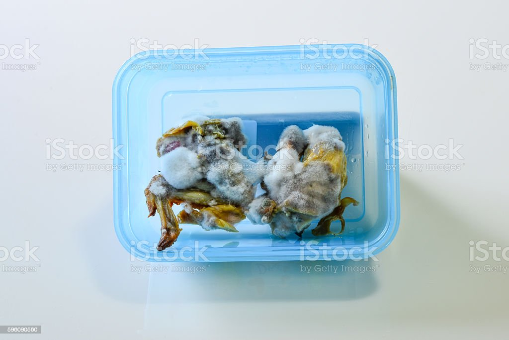 Grill Chicken with the Mold, Trash in the Kitchen royalty-free stock photo