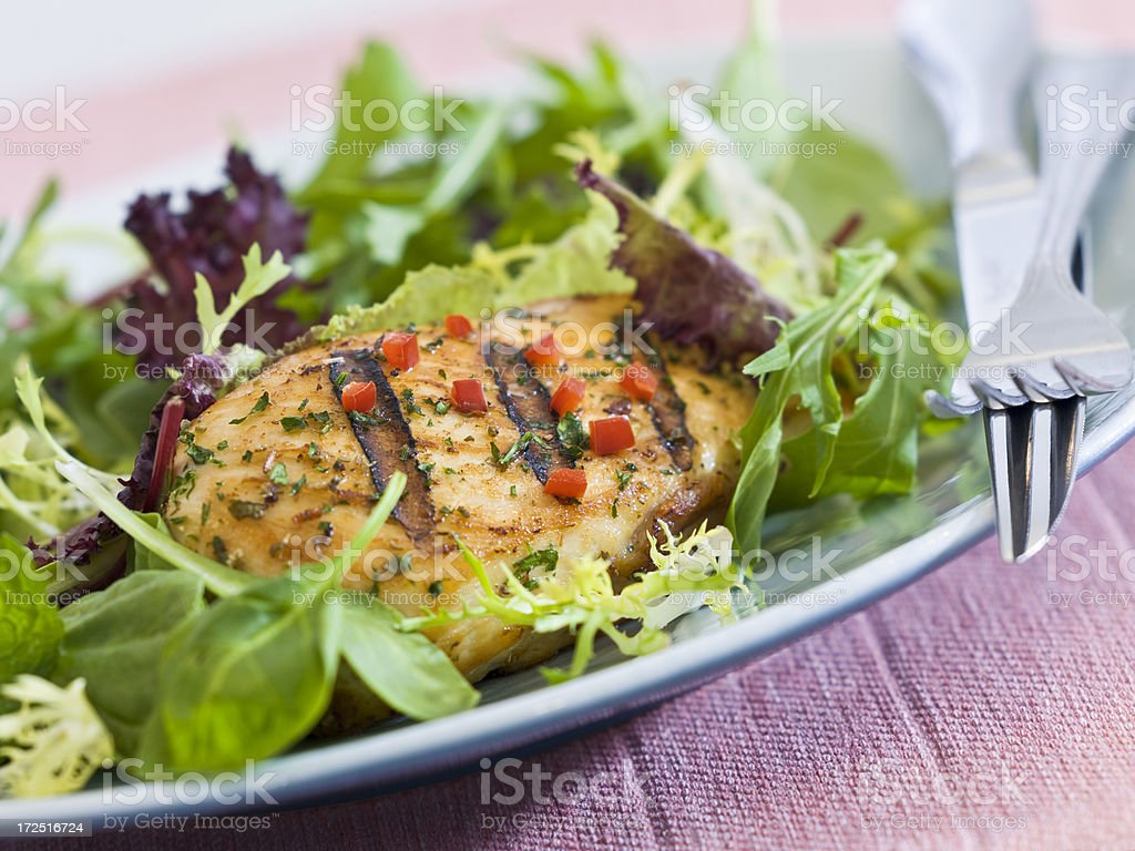 grilled chicken with baby greens royalty-free stock photo