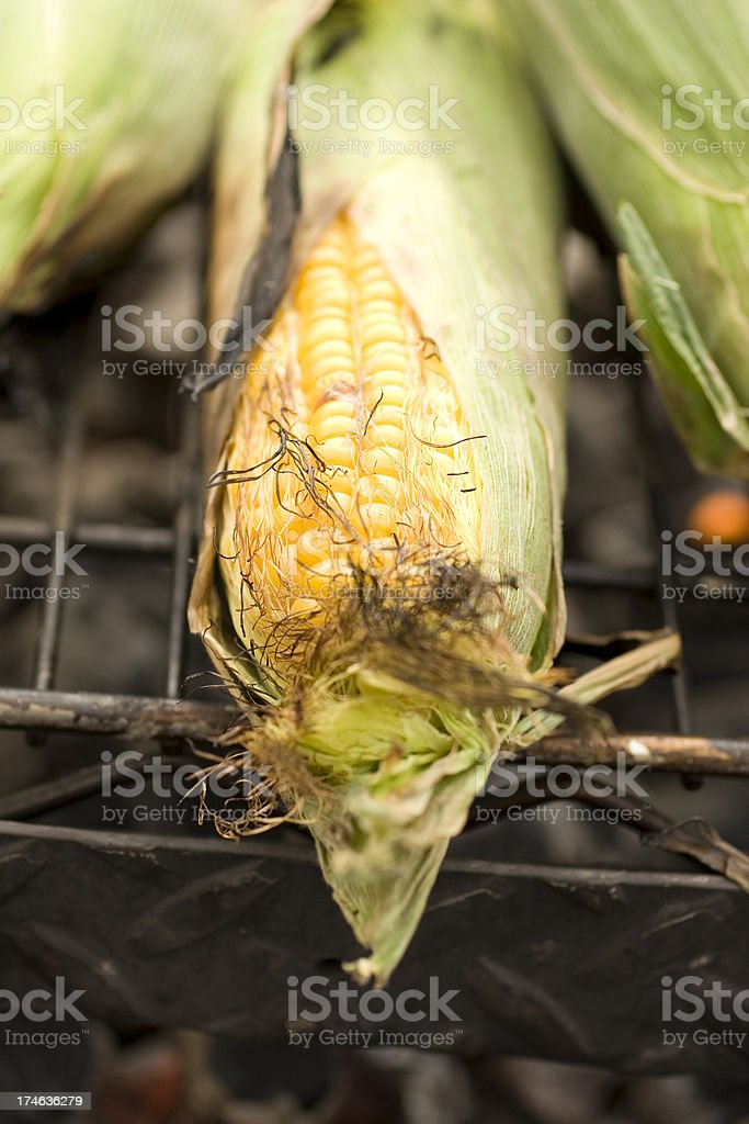 Grilled corn on the cob royalty-free stock photo