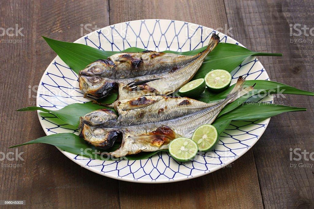 grilled fish ( horse mackerel ), japanese cuisine royalty-free stock photo