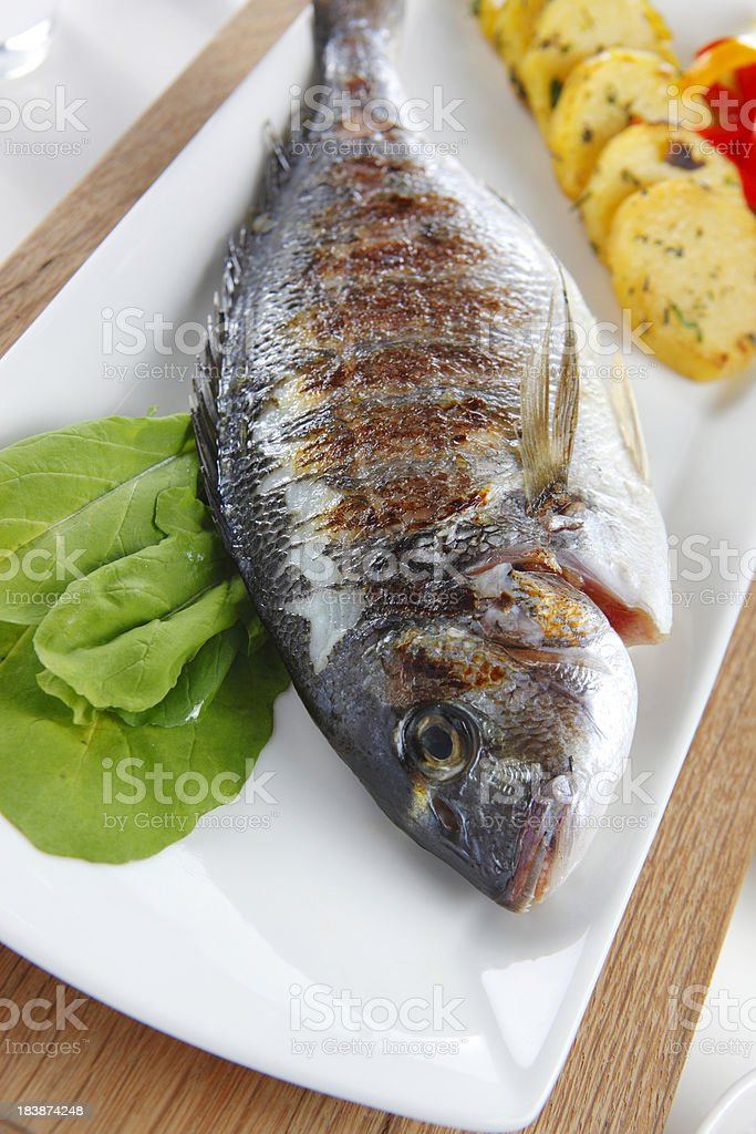 Grilled Gilt-Head Bream royalty-free stock photo
