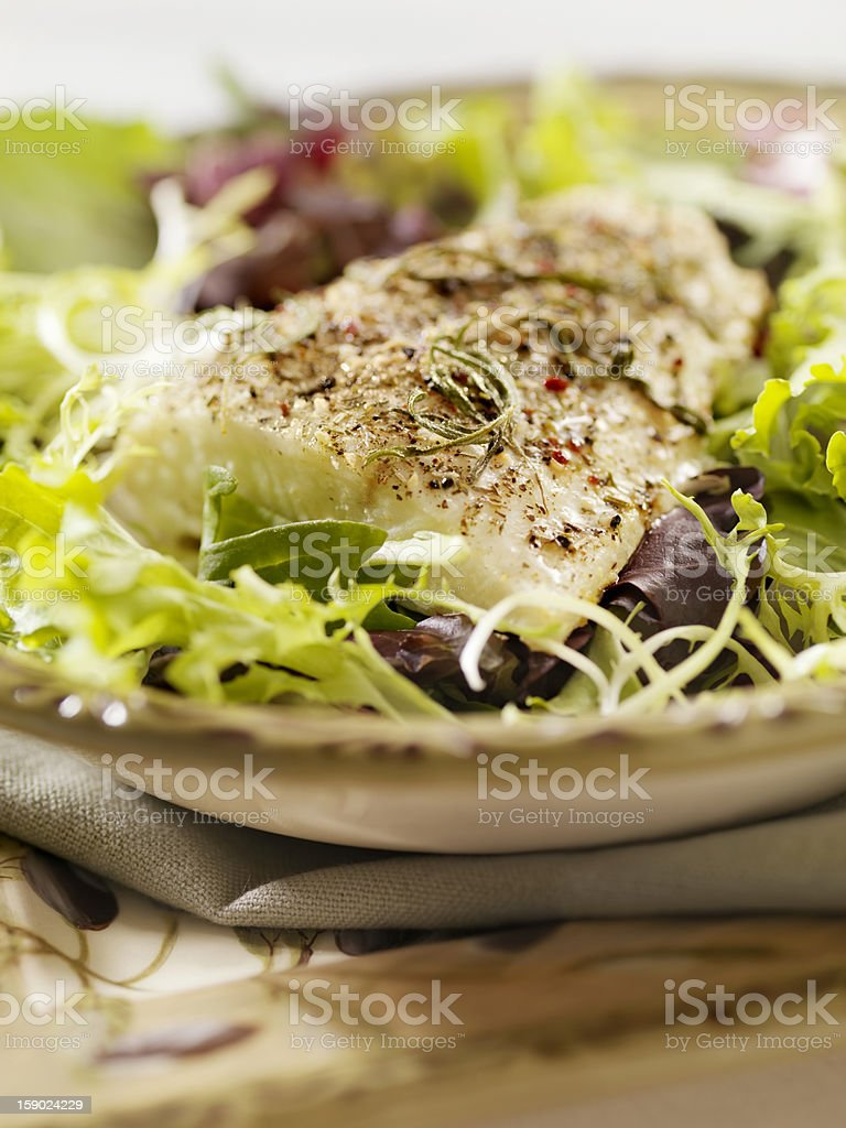 Grilled Halibut with a Fresh Salad royalty-free stock photo
