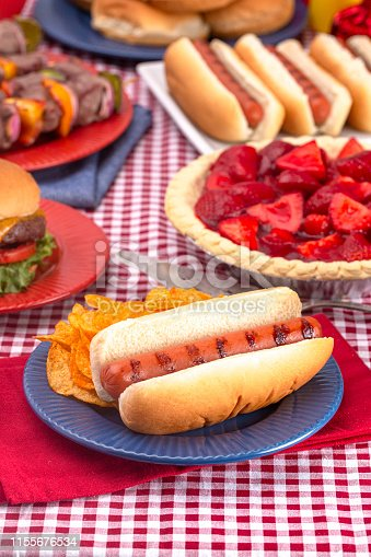 534317162 istock photo Grilled Hot Dog on a Table Set for an American BBQ with Red White and Blue 1155676534